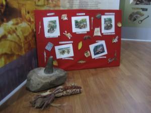 Prehistoric People Program