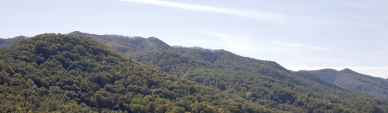 Figure 9. An aerial view of Buffalo Mountain. Courtesy of Natural Concepts.